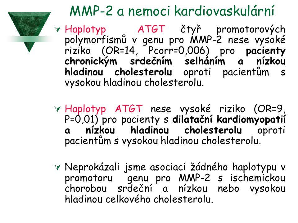  Haplotyp ATGT čtyř promotorových polymorfismů v genu pro MMP-2 nese vysoké riziko (OR=14, Pcorr=0,006) pro pacienty chronickým srdečním selháním a n