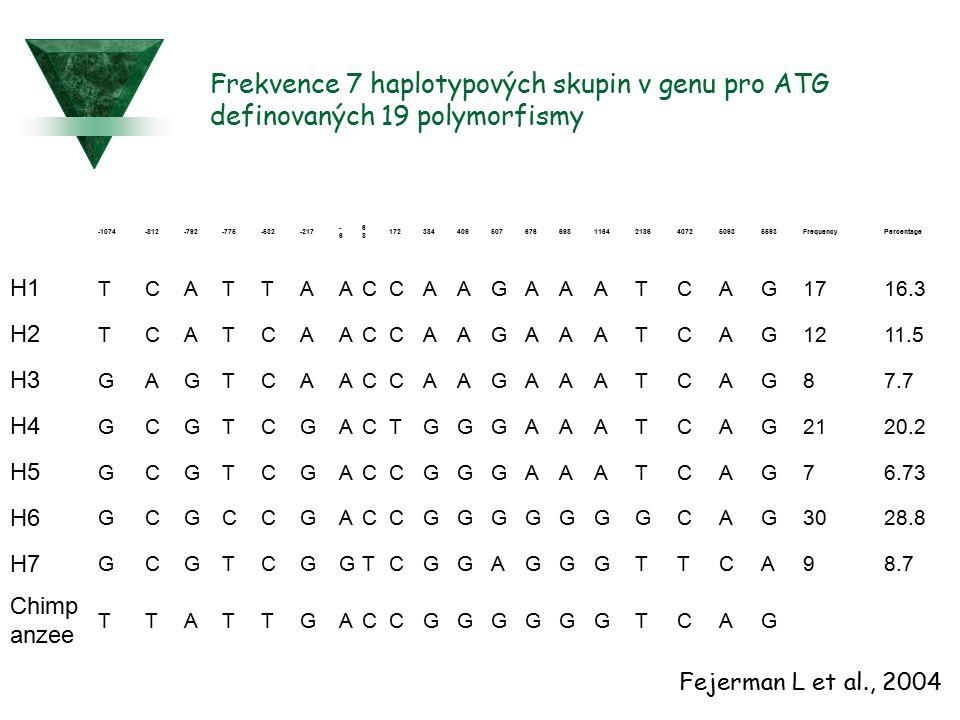 Frekvence 7 haplotypových skupin v genu pro ATG definovaných 19 polymorfismy -1074-812-792-775-532-217 -6-6 6868 1723844095076766981164218640725093559