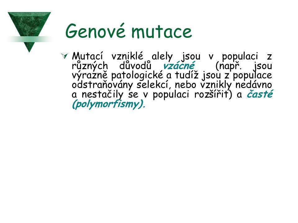 Genové mutace  Mutací vzniklé alely jsou v populaci z různých důvodů vzácné (např. jsou výrazně patologické a tudíž jsou z populace odstraňovány sele