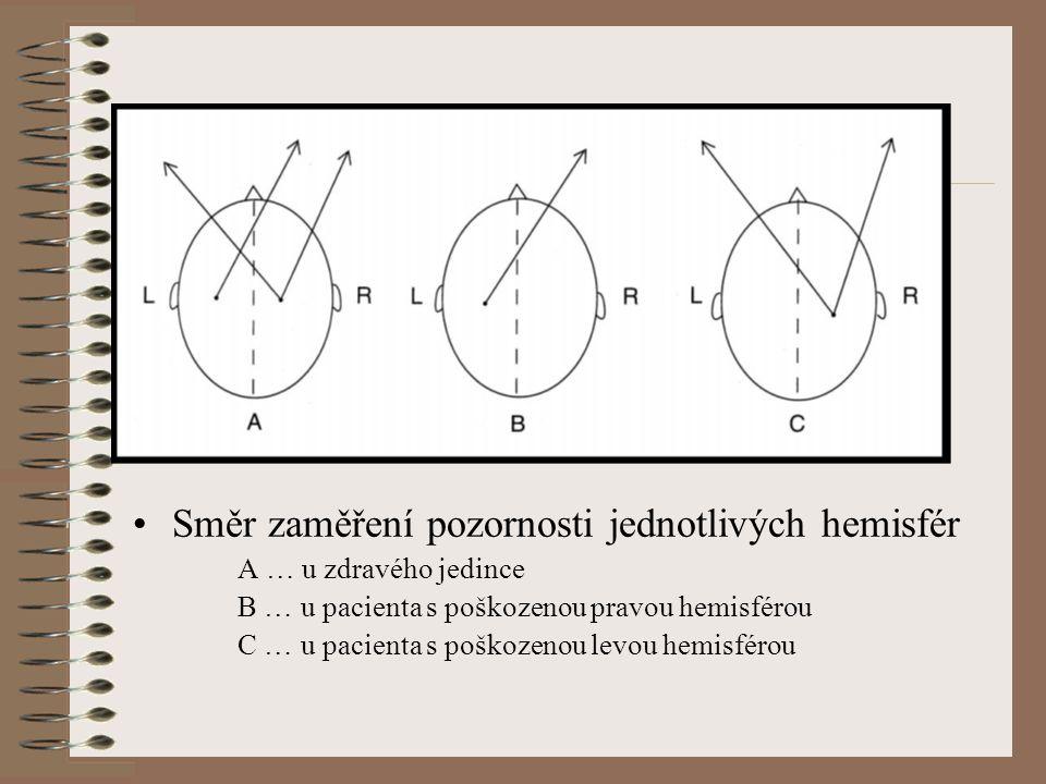 Směr zaměření pozornosti jednotlivých hemisfér A … u zdravého jedince B … u pacienta s poškozenou pravou hemisférou C … u pacienta s poškozenou levou hemisférou