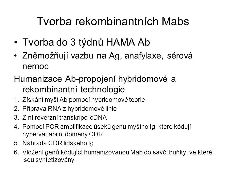 Tvorba rekombinantních Mabs Tvorba do 3 týdnů HAMA Ab Zněmožňují vazbu na Ag, anafylaxe, sérová nemoc Humanizace Ab-propojení hybridomové a rekombinan