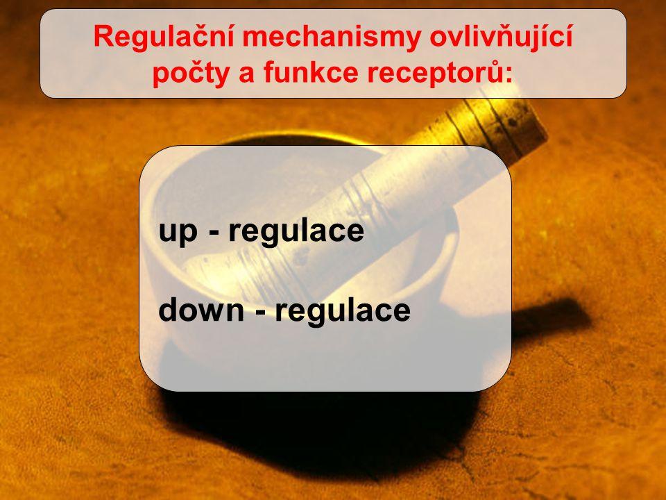 up - regulace down - regulace Regulační mechanismy ovlivňující počty a funkce receptorů: