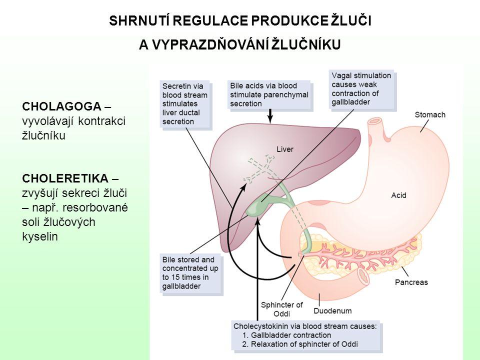 SHRNUTÍ REGULACE PRODUKCE ŽLUČI A VYPRAZDŇOVÁNÍ ŽLUČNÍKU CHOLAGOGA – vyvolávají kontrakci žlučníku CHOLERETIKA – zvyšují sekreci žluči – např. resorbo