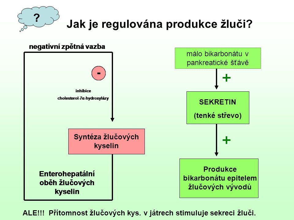 ? Jak je regulována produkce žluči? negativní zpětná vazba ALE!!! Přítomnost žlučových kys. v játrech stimuluje sekreci žluči.