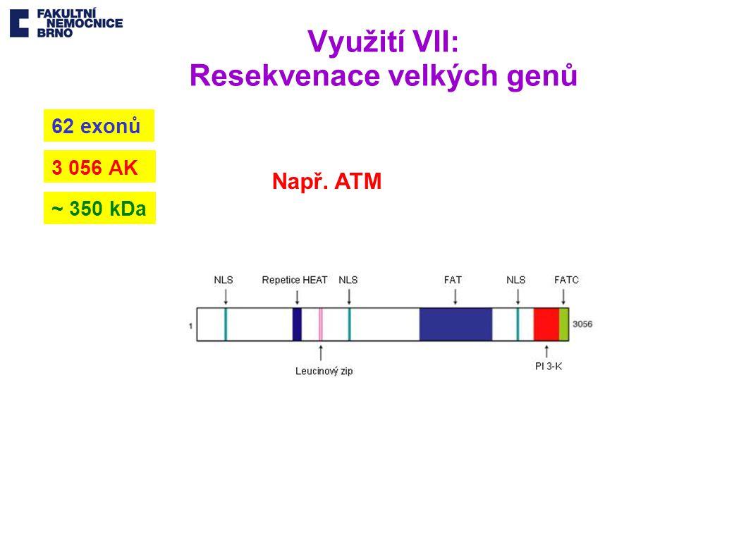 Využití VII: Resekvenace velkých genů 3 056 AK 62 exonů ~ 350 kDa Např. ATM