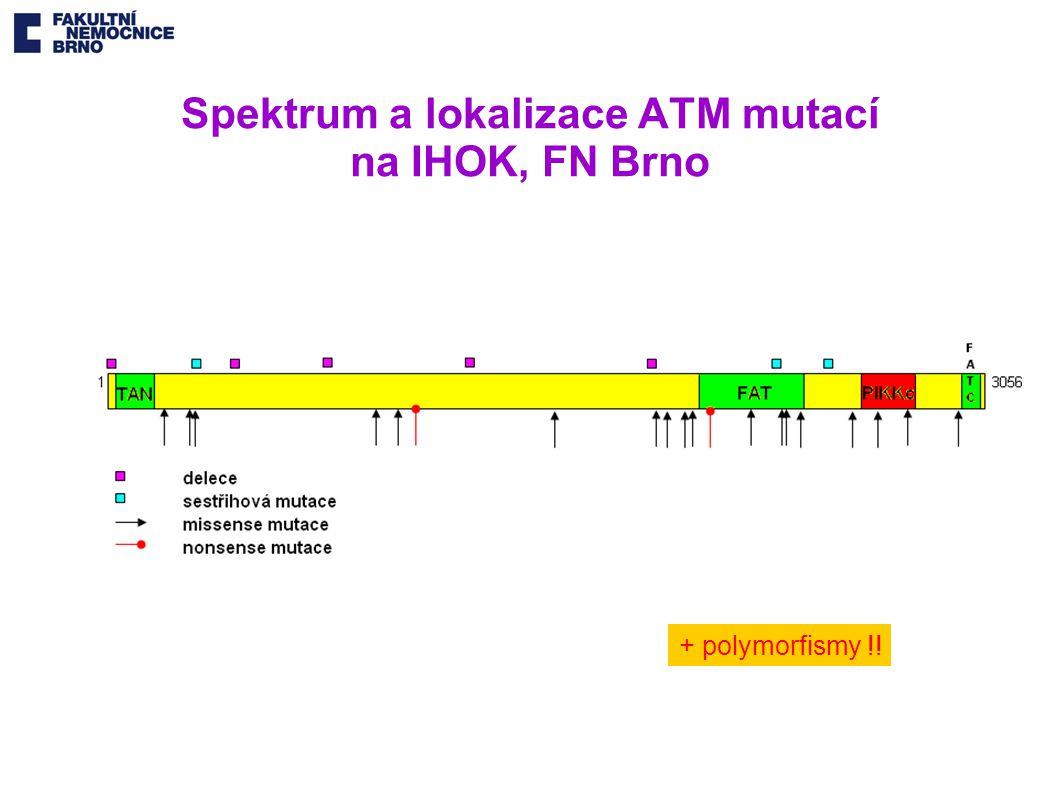 Spektrum a lokalizace ATM mutací na IHOK, FN Brno + polymorfismy !!