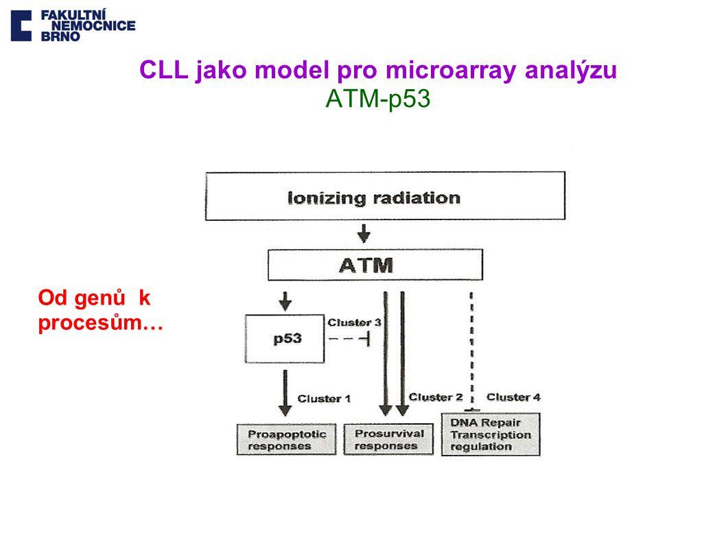 CLL jako model pro microarray analýzu ATM-p53 Od genů k procesům…