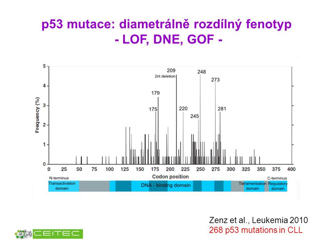 p53 mutace: diametrálně rozdílný fenotyp - LOF, DNE, GOF - Zenz et al., Leukemia 2010 268 p53 mutations in CLL