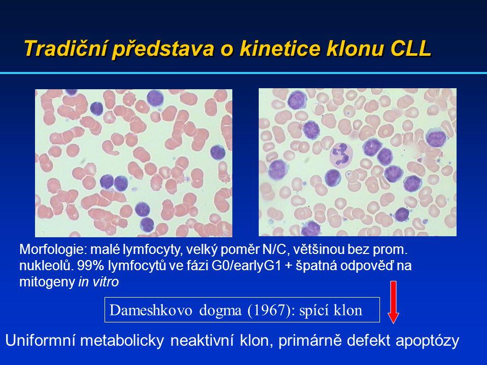 Tradiční představa o kinetice klonu CLL Morfologie: malé lymfocyty, velký poměr N/C, většinou bez prom. nukleolů. 99% lymfocytů ve fázi G0/earlyG1 + š