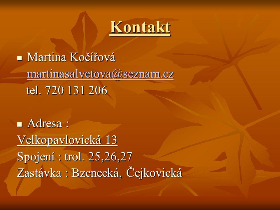 Kontakt Martina Kočířová Martina Kočířová martinasalvetova@seznam.cz tel. 720 131 206 tel. 720 131 206 Adresa : Adresa : Velkopavlovická 13 Spojení :
