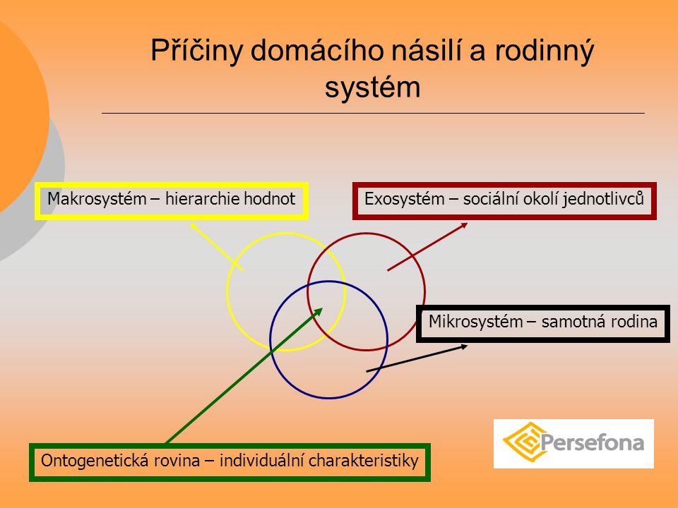 Příčiny domácího násilí a rodinný systém Ontogenetická rovina – individuální charakteristiky Mikrosystém – samotná rodina Exosystém – sociální okolí jednotlivcůMakrosystém – hierarchie hodnot