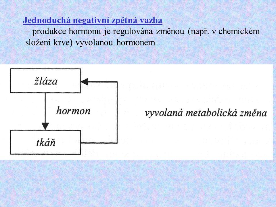 Jednoduchá negativní zpětná vazba – produkce hormonu je regulována změnou (např. v chemickém složení krve) vyvolanou hormonem
