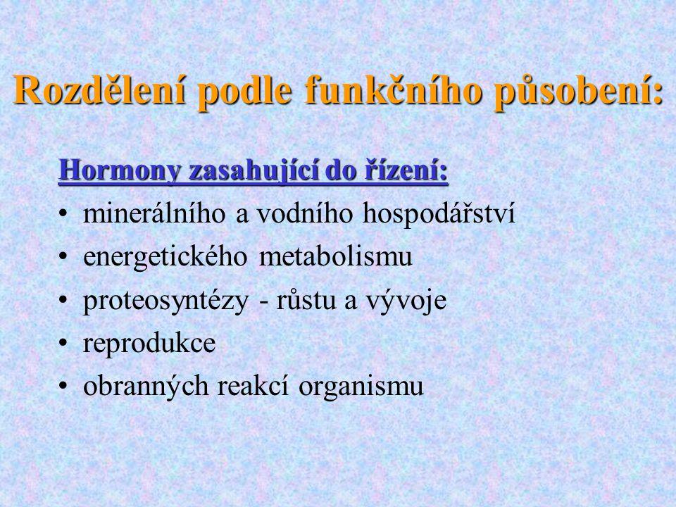 Rozdělení podle funkčního působení: Hormony zasahující do řízení: minerálního a vodního hospodářství energetického metabolismu proteosyntézy - růstu a