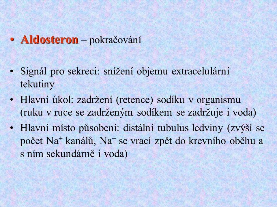 AldosteronAldosteron – pokračování Signál pro sekreci: snížení objemu extracelulární tekutiny Hlavní úkol: zadržení (retence) sodíku v organismu (ruku