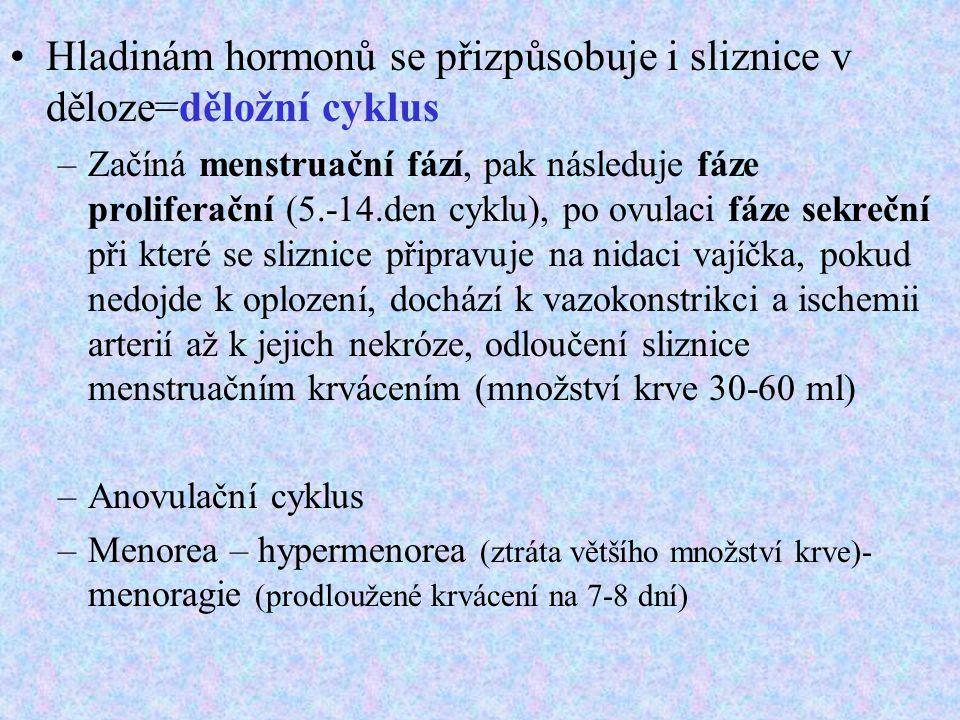 Hladinám hormonů se přizpůsobuje i sliznice v děloze=děložní cyklus –Začíná menstruační fází, pak následuje fáze proliferační (5.-14.den cyklu), po ov
