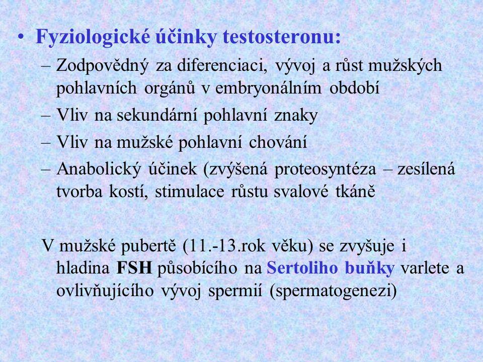 Fyziologické účinky testosteronu: –Zodpovědný za diferenciaci, vývoj a růst mužských pohlavních orgánů v embryonálním období –Vliv na sekundární pohla
