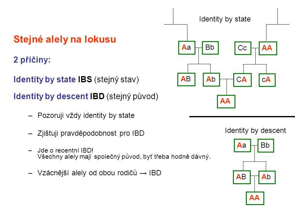 Stejné alely na lokusu 2 příčiny: Identity by state IBS (stejný stav) Identity by descent IBD (stejný původ) –Pozoruji vždy identity by state –Zjištuj