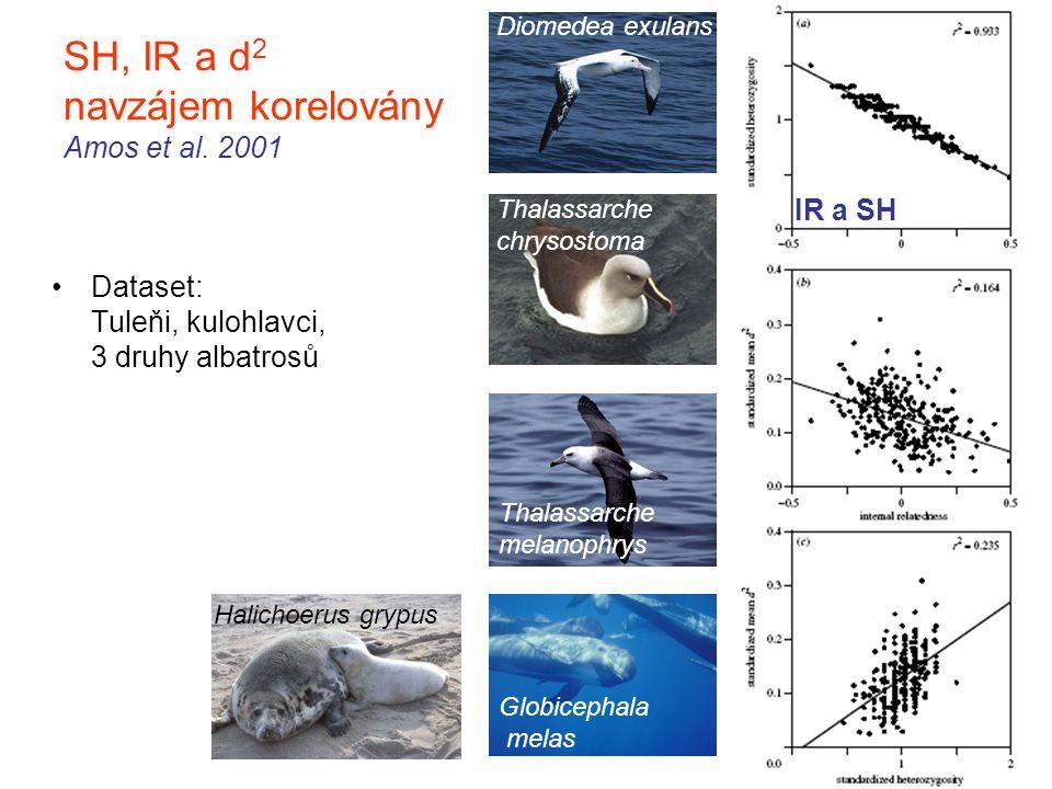 SH, IR a d 2 navzájem korelovány Amos et al. 2001 Dataset: Tuleňi, kulohlavci, 3 druhy albatrosů IR a SH Halichoerus grypus Diomedea exulans Thalassar