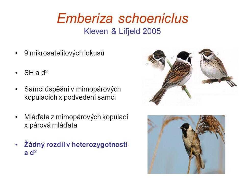 Emberiza schoeniclus Kleven & Lifjeld 2005 9 mikrosatelitových lokusů SH a d 2 Samci úspěšní v mimopárových kopulacích x podvedení samci Mláďata z mim