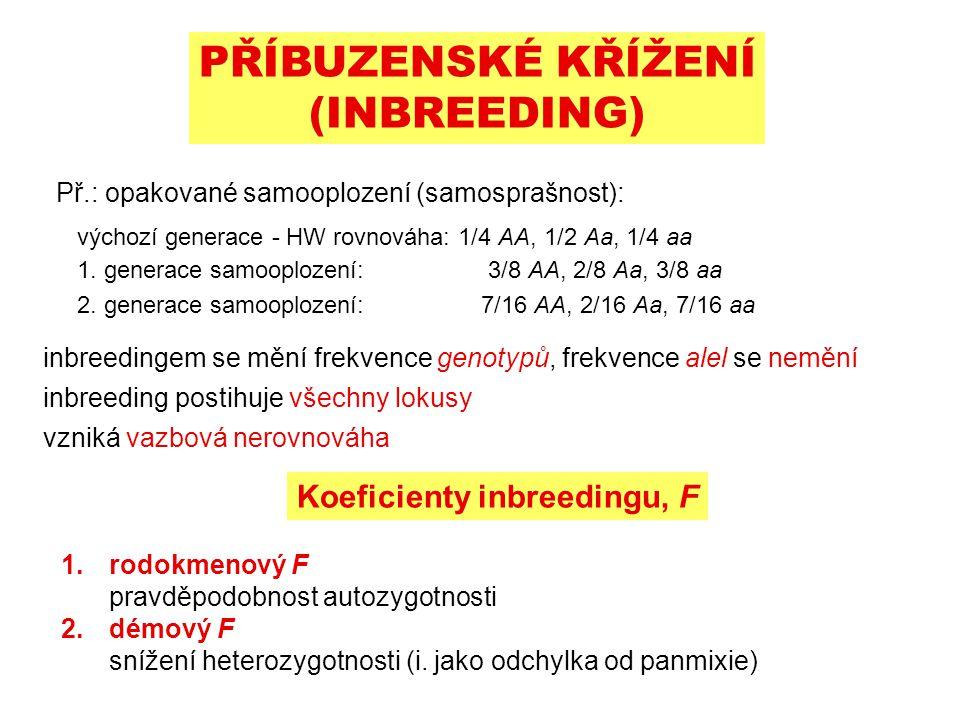 PŘÍBUZENSKÉ KŘÍŽENÍ (INBREEDING) Př.: opakované samooplození (samosprašnost): výchozí generace - HW rovnováha: 1/4 AA, 1/2 Aa, 1/4 aa 1.