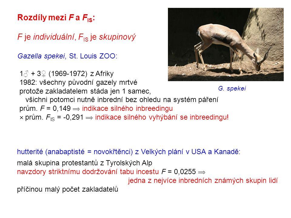 Rozdíly mezi F a F IS : F je individuální, F IS je skupinový Gazella spekei, St. Louis ZOO: 1♂ + 3♀ (1969-1972) z Afriky 1982: všechny původní gazely