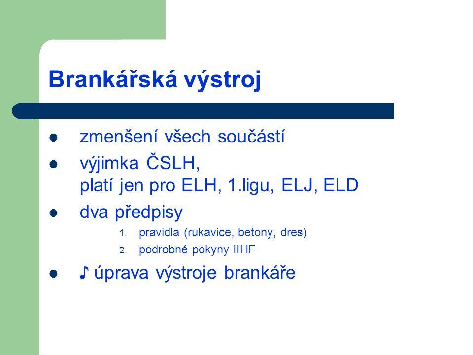 Brankářská výstroj zmenšení všech součástí výjimka ČSLH, platí jen pro ELH, 1.ligu, ELJ, ELD dva předpisy 1. pravidla (rukavice, betony, dres) 2. podr