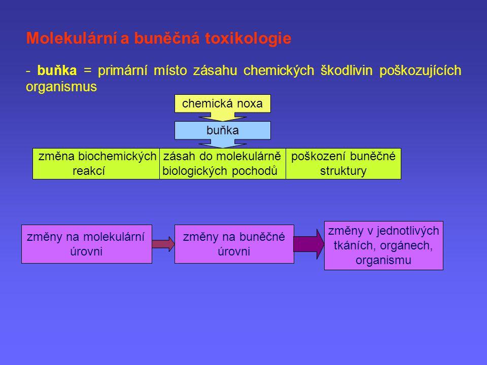 Molekulární a buněčná toxikologie - buňka = primární místo zásahu chemických škodlivin poškozujících organismus chemická noxa buňka změna biochemickýc
