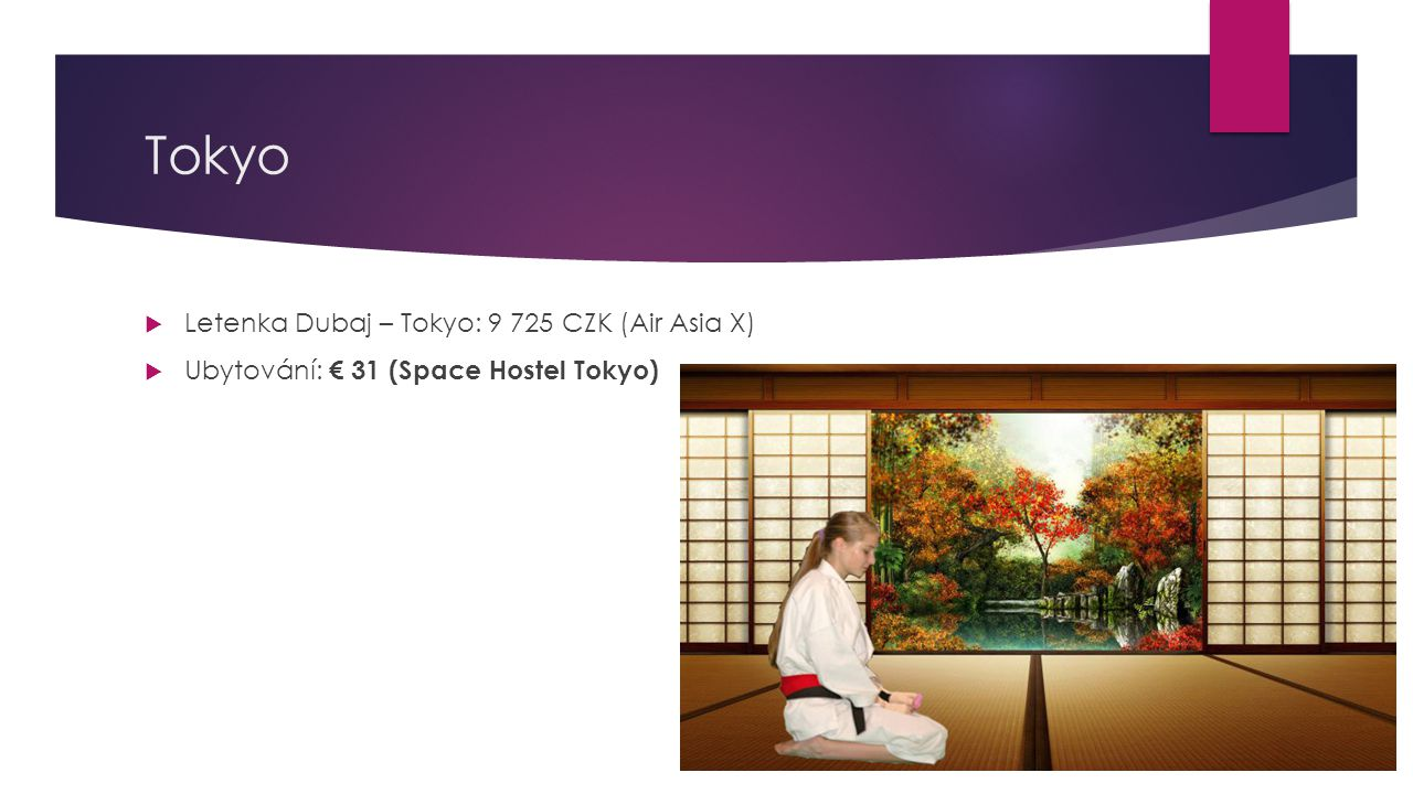 Tokyo  Letenka Dubaj – Tokyo: 9 725 CZK (Air Asia X)  Ubytování: € 31 (Space Hostel Tokyo)