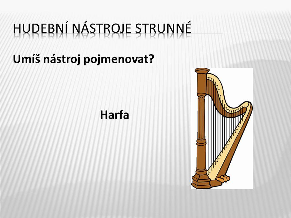 Umíš nástroj pojmenovat Harfa 4
