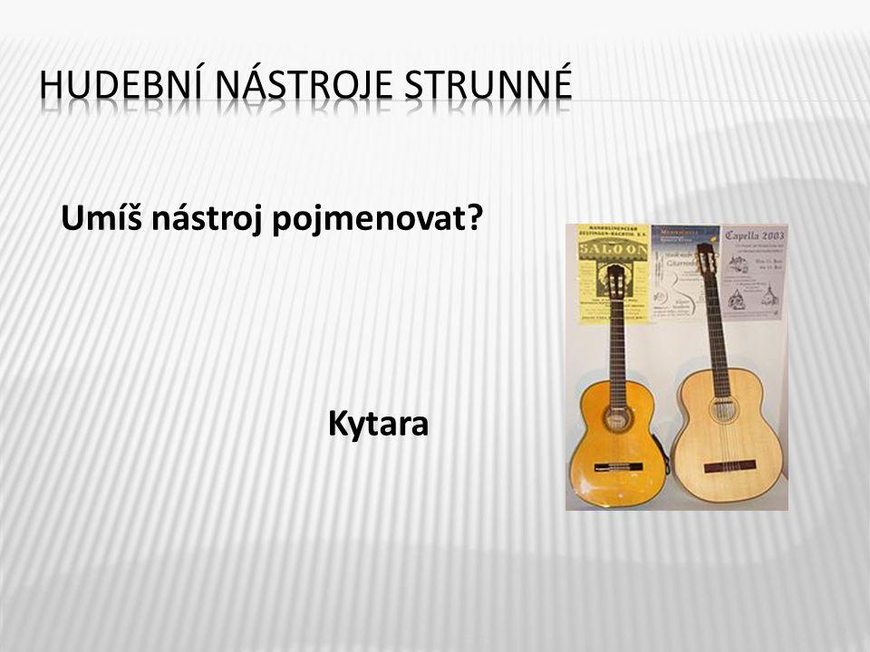 5 Kytara Umíš nástroj pojmenovat