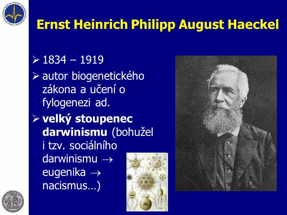 Ernst Heinrich Philipp August Haeckel  1834 – 1919  autor biogenetického zákona a učení o fylogenezi ad.  velký stoupenec darwinismu (bohužel i tzv