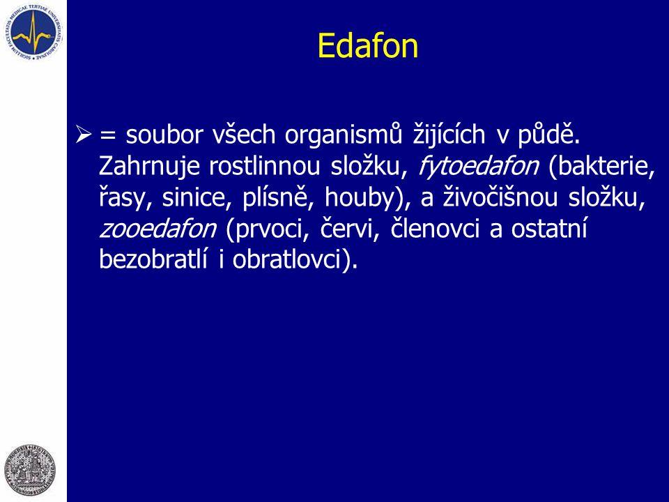 Edafon  = soubor všech organismů žijících v půdě. Zahrnuje rostlinnou složku, fytoedafon (bakterie, řasy, sinice, plísně, houby), a živočišnou složku