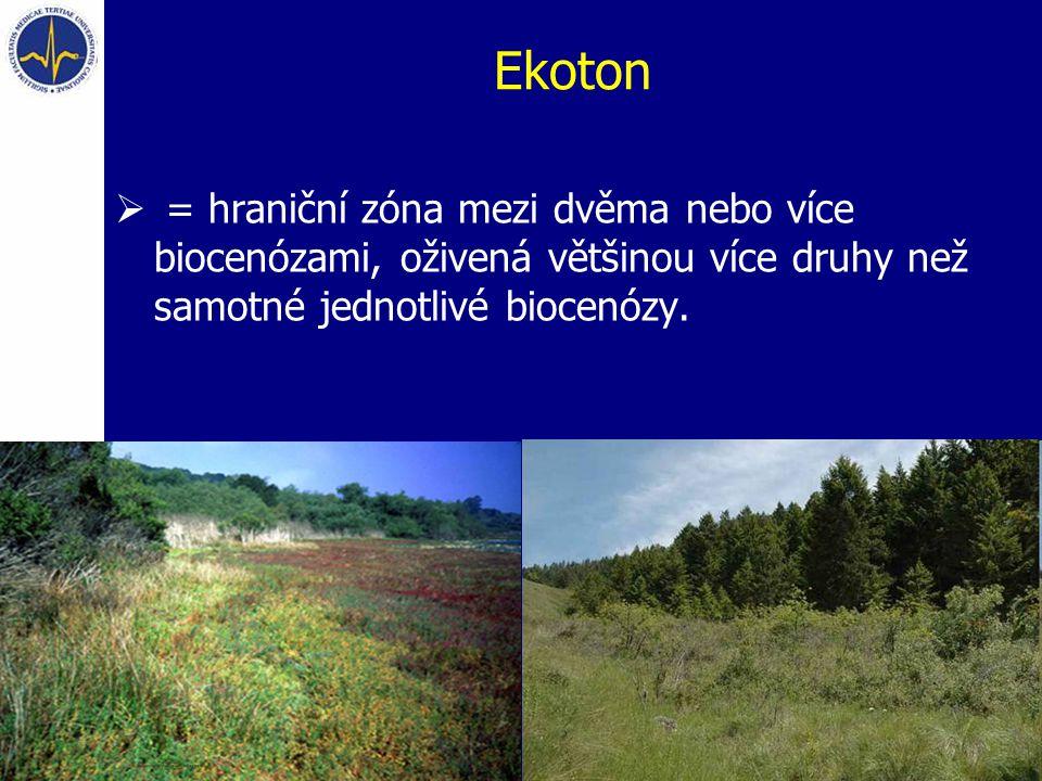 Ekoton  = hraniční zóna mezi dvěma nebo více biocenózami, oživená většinou více druhy než samotné jednotlivé biocenózy. Photo Source: http://www.elkh
