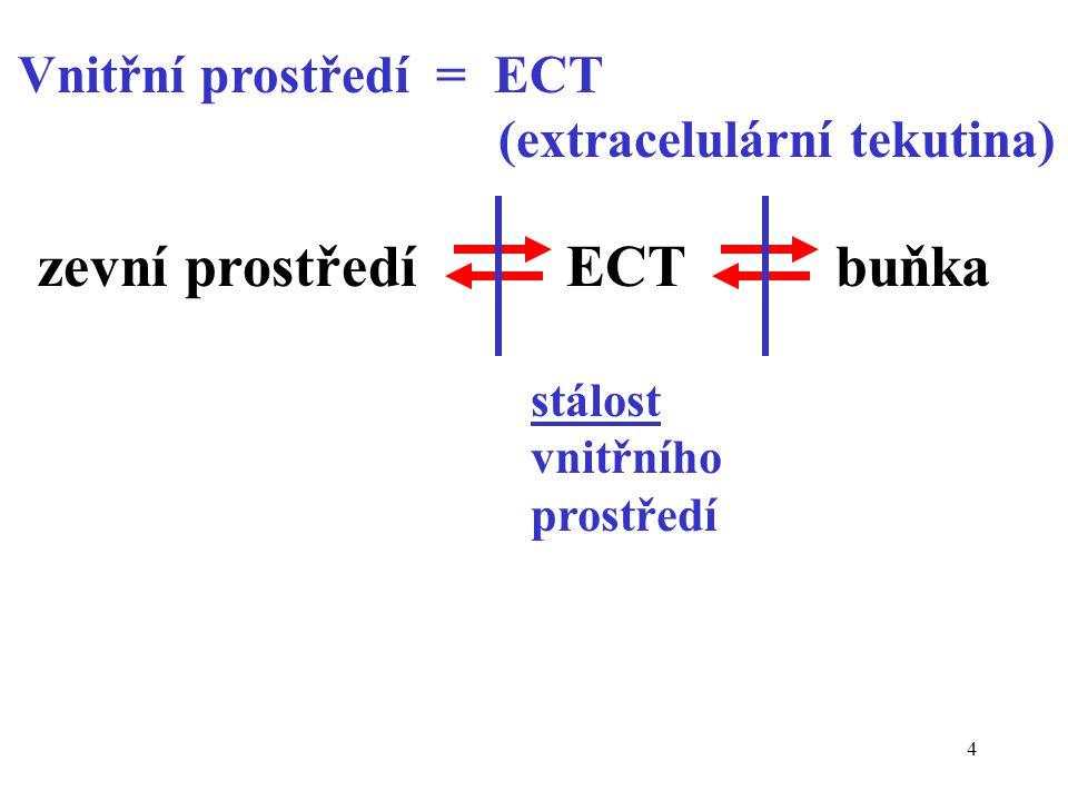 4 Vnitřní prostředí = ECT (extracelulární tekutina) zevní prostředí ECT buňka stálost vnitřního prostředí