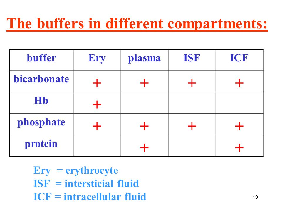 49 bufferEryplasmaISFICF bicarbonate  Hb  phosphate  protein  Ery = erythrocyte ISF = intersticial fluid ICF = intracellular fluid The buffers in different compartments: