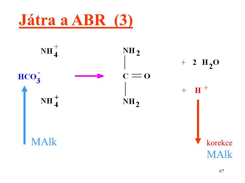 67 Játra a ABR (3) MAlk korekce MAlk