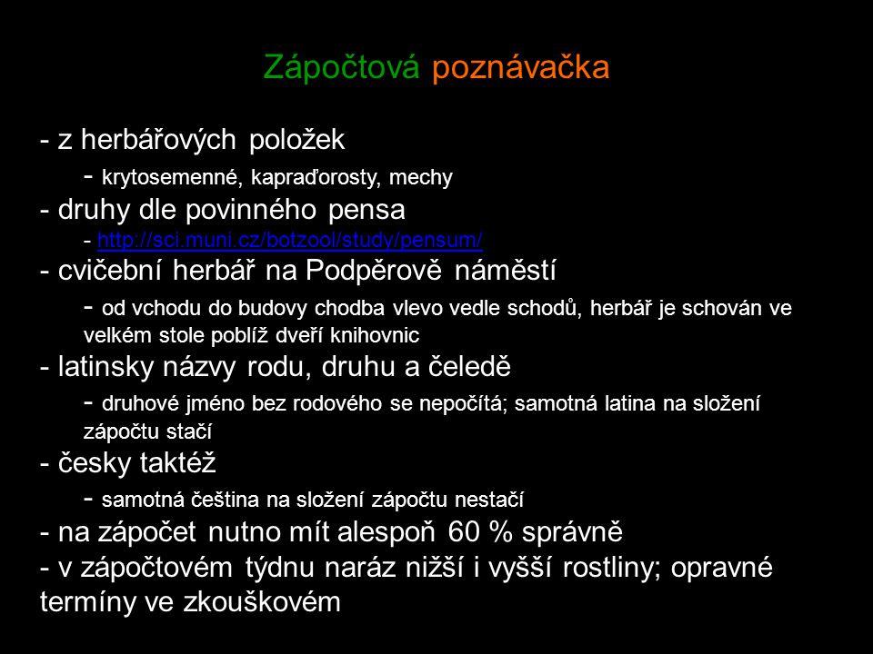 Zápočtová poznávačka - z herbářových položek - krytosemenné, kapraďorosty, mechy - druhy dle povinného pensa - http://sci.muni.cz/botzool/study/pensum