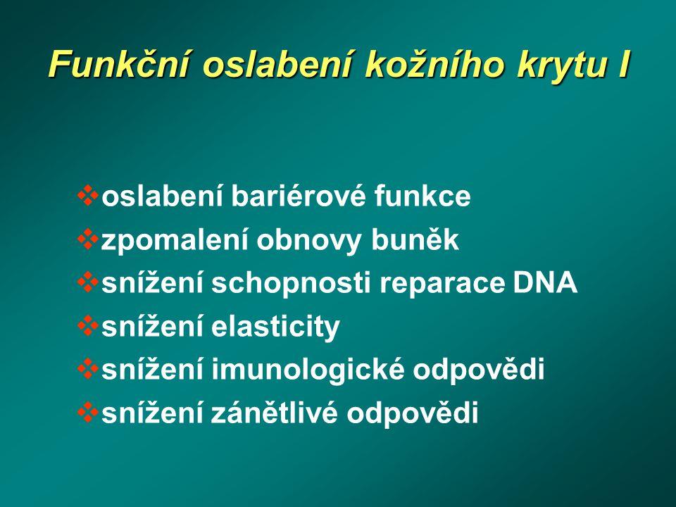 Funkční oslabení kožního krytu I  oslabení bariérové funkce  zpomalení obnovy buněk  snížení schopnosti reparace DNA  snížení elasticity  snížení