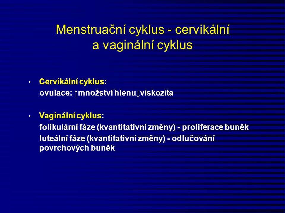 Menstruační cyklus - cervikální a vaginální cyklus Cervikální cyklus: ovulace: ↑množství hlenu↓viskozita Vaginální cyklus: folikulární fáze (kvantitat
