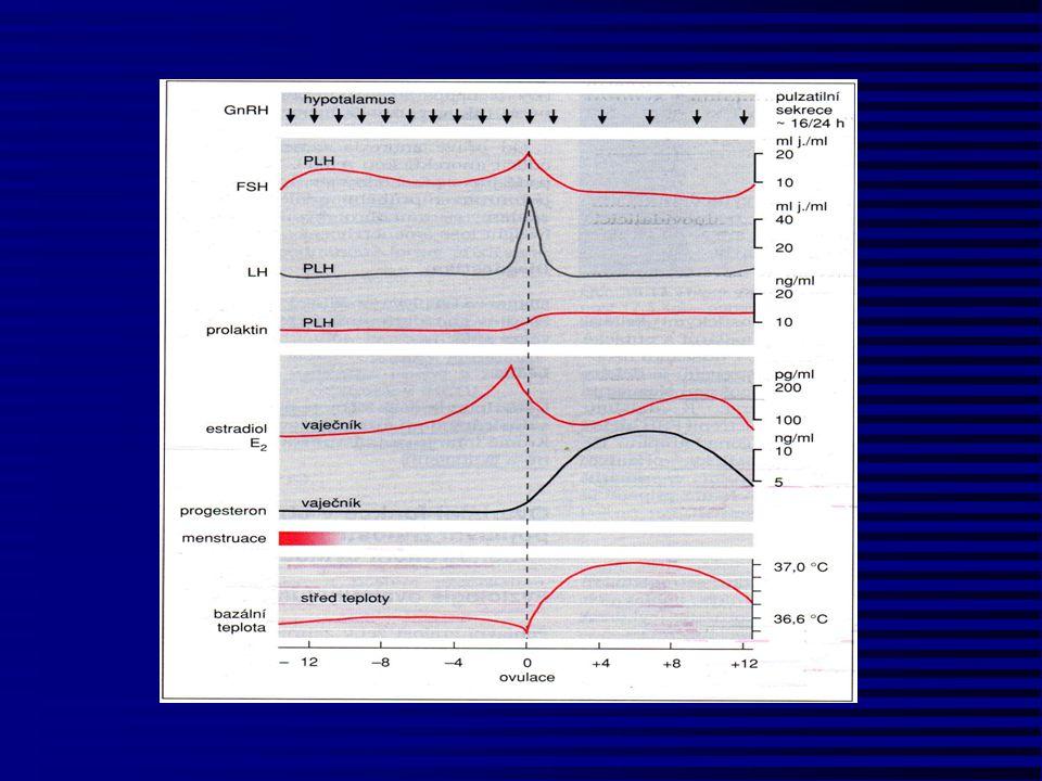 Diagnostika - funkční testy Progesteronový test 60-120mg AGL Pozitivní (krvácení) = dostatek estrogenů+ nedostatek gestagenů = luteální insuficience Negativní (nekrvácí) = gravidita = nedostatek estrogenů = chybění či nereaktivita endometria Estrogenový test 2-3 týdenní aplikace E2 Negativní (nekrvácí) = chybění či nereaktivita endometria Pozitivní (krvácení) = nedostatek E2 = ovarium, hypofýza,hypotalamus Gonadotropinový test- hMG, FSH Negativní (nekrvácí) = porucha ovárií (!!) - genetické vyšetření Pozitivní (krvácení) = porucha hypofýzy či hypotalamu Gonadoliberinový test Pozitivní = porucha hypotalamu Negativní = porucha hypofýzy