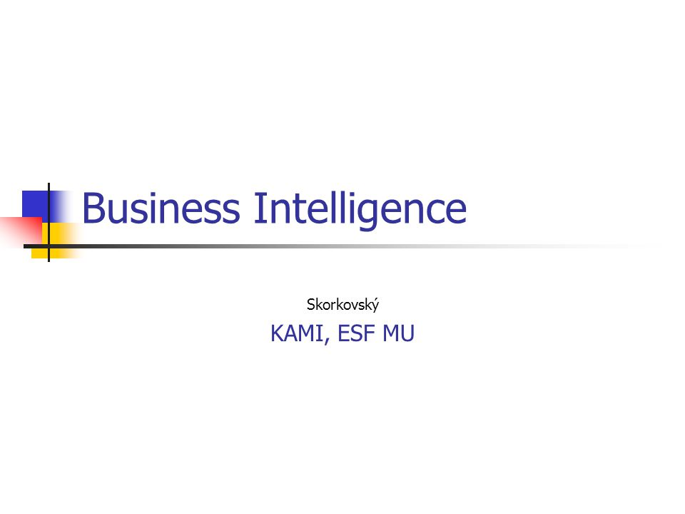 Business Intelligence Skorkovský KAMI, ESF MU
