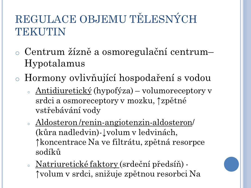 REGULACE OBJEMU TĚLESNÝCH TEKUTIN o Centrum žízně a osmoregulační centrum– Hypotalamus o Hormony ovlivňující hospodaření s vodou o Antidiuretický (hypofýza) – volumoreceptory v srdci a osmoreceptory v mozku, ↑zpětné vstřebávání vody o Aldosteron /renin-angiotenzin-aldosteron/ (kůra nadledvin)-↓volum v ledvinách, ↑koncentrace Na ve filtrátu, zpětná resorpce sodíků o Natriuretické faktory (srdeční předsíň) - ↑volum v srdci, snižuje zpětnou resorbci Na