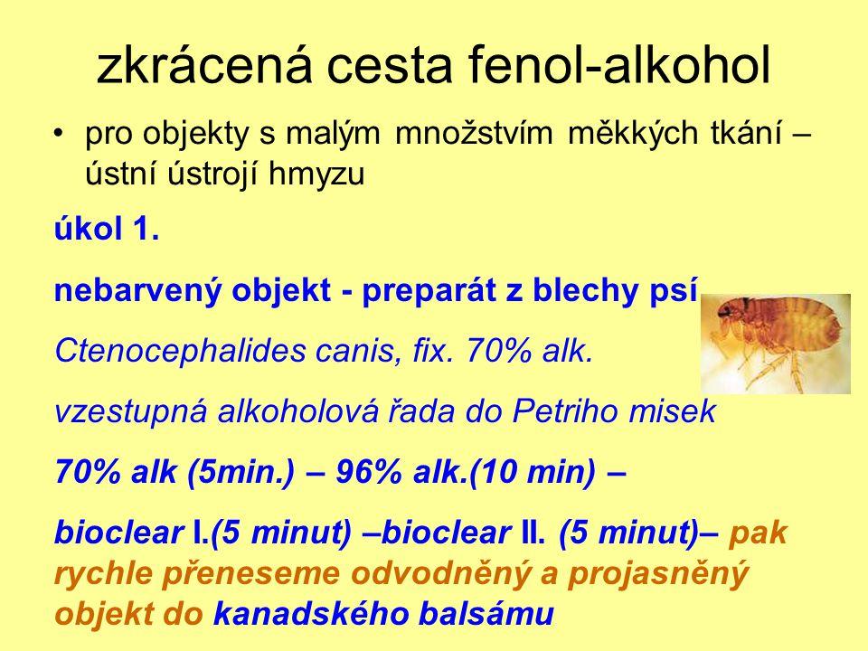 zkrácená cesta fenol-alkohol pro objekty s malým množstvím měkkých tkání – ústní ústrojí hmyzu úkol 1. nebarvený objekt - preparát z blechy psí Ctenoc