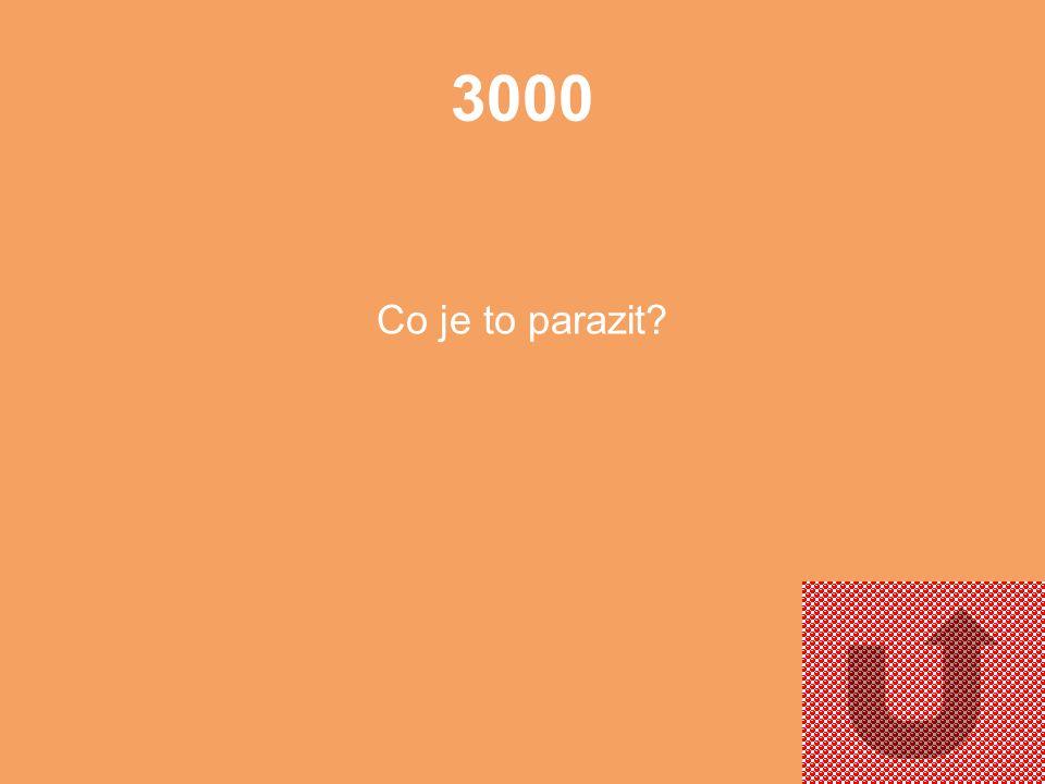2000 K čemu slouží semena?