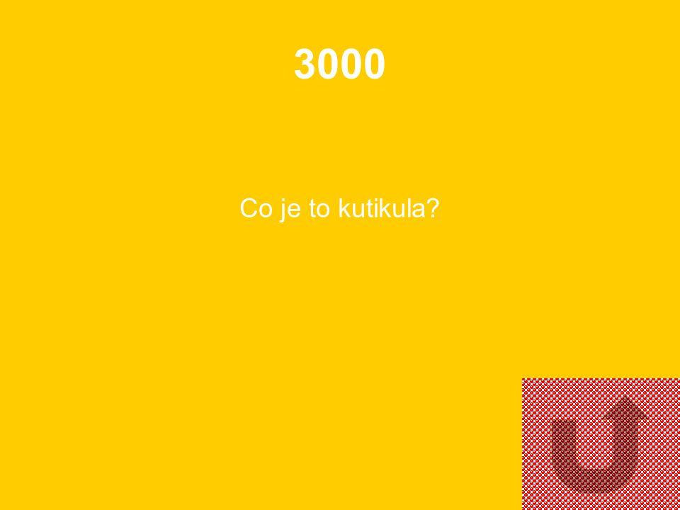 2000 Uveďte jeden druh hmyzu se sacím ústním ústrojím.