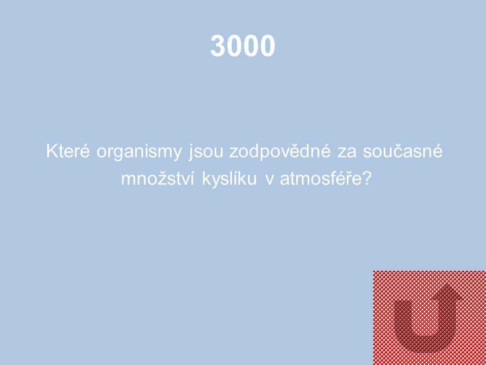 3000 Co je to parazit?