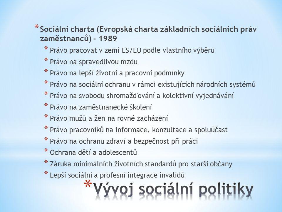 * Sociální charta (Evropská charta základních sociálních práv zaměstnanců) - 1989 * Právo pracovat v zemi ES/EU podle vlastního výběru * Právo na spravedlivou mzdu * Právo na lepší životní a pracovní podmínky * Právo na sociální ochranu v rámci existujících národních systémů * Právo na svobodu shromažďování a kolektivní vyjednávání * Právo na zaměstnanecké školení * Právo mužů a žen na rovné zacházení * Právo pracovníků na informace, konzultace a spoluúčast * Právo na ochranu zdraví a bezpečnost při práci * Ochrana dětí a adolescentů * Záruka minimálních životních standardů pro starší občany * Lepší sociální a profesní integrace invalidů