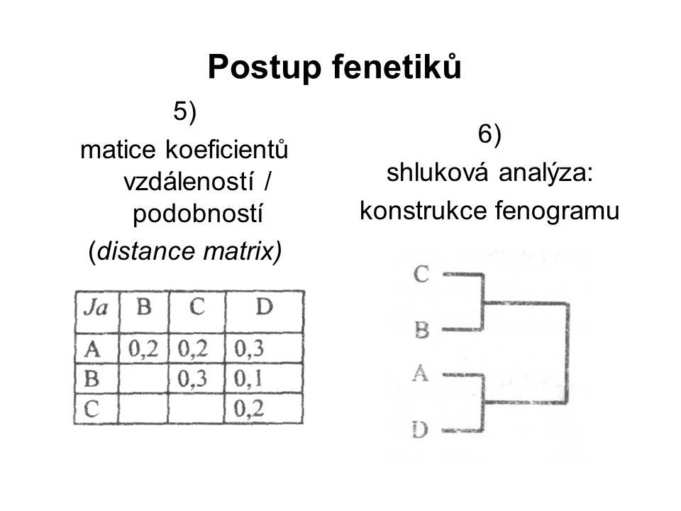 Sběr morfologických dat pro statistickou analýzu jen kvantitativní a binární znaky jednotlivé znaky vs.