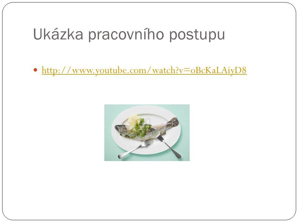 Ukázka pracovního postupu http://www.youtube.com/watch v=oBcKaLAiyD8