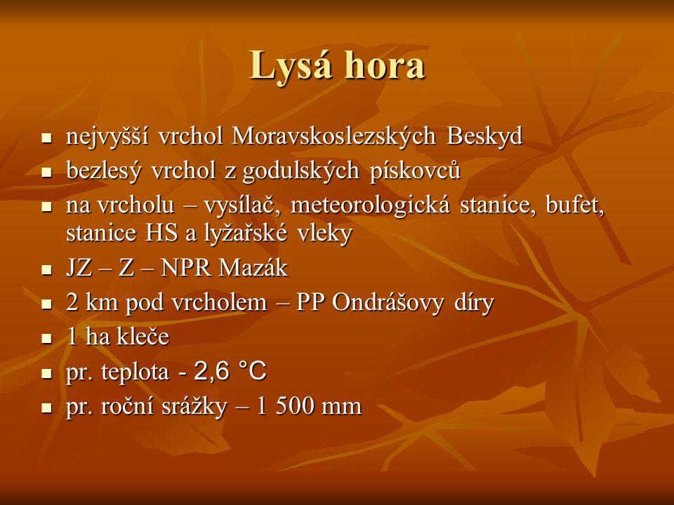 Lysá hora nejvyšší vrchol Moravskoslezských Beskyd nejvyšší vrchol Moravskoslezských Beskyd bezlesý vrchol z godulských pískovců bezlesý vrchol z godu